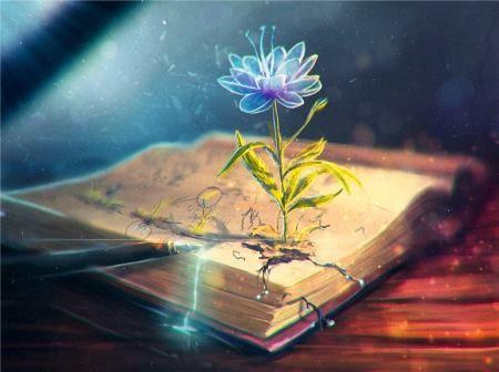 a tudás virágai