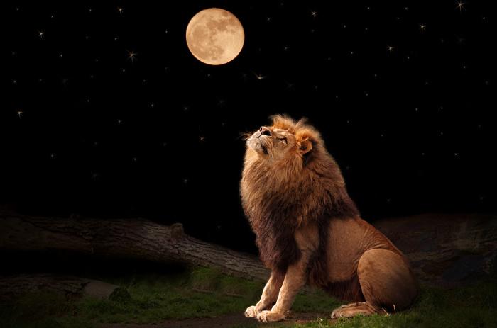 holdfogyatkozás az Oroszlánban