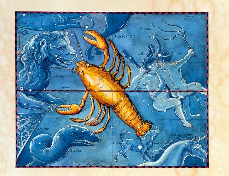 egyetlen horoszkóp rák, hím)